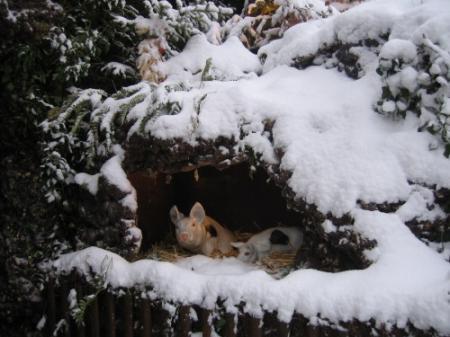 Sous la neige du 18 décembre